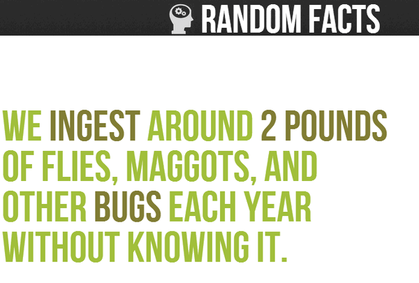 random facts to amaze you cloudeight infoave