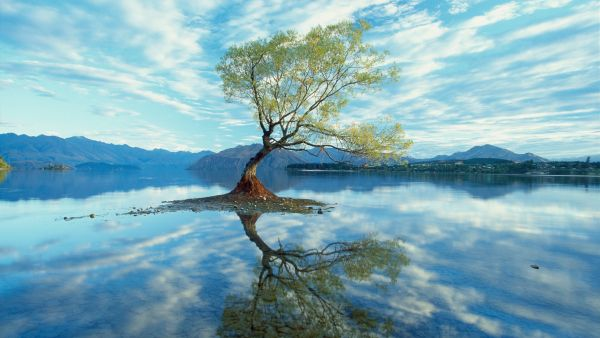 Over 200 Beautiful Photos For Your Desktop Wallpaper