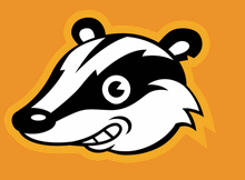 Cloudeight InfoAve - Privacy Badger