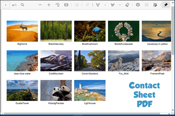 How to make a contact sheet - Windows 10 - Cloudeight Internet