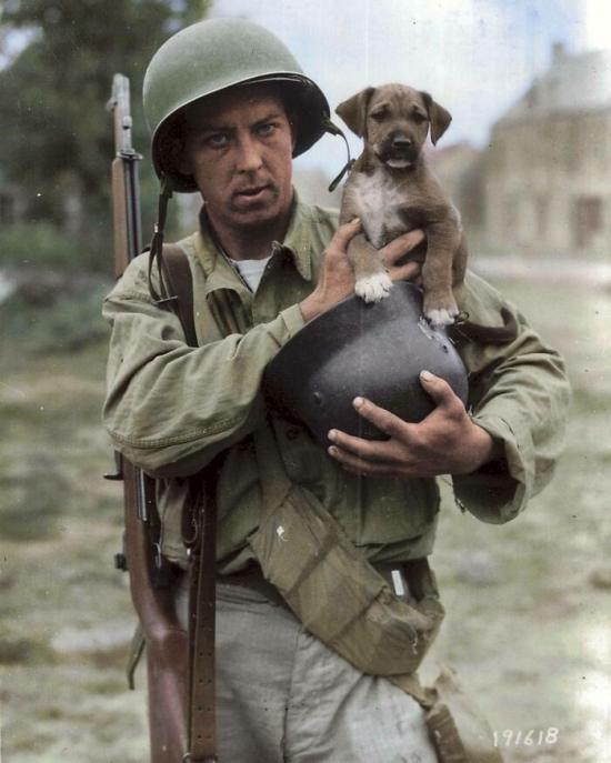 Soldier and Dog from BoredPanda - A Cloudeight Site Pick